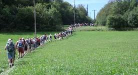 Entre Namur et Malonne: marcher avec l'évêque
