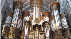 Concerts d'orgue: le retour des Collégiades, à Mons