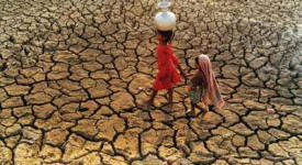 La corne de l'Afrique victime de la sécheresse