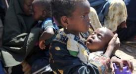 La faim touche 815 millions de personnes dans le monde