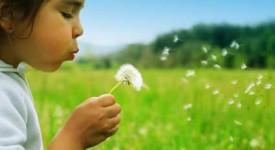 Protéger l'enfance, une priorité pour l'Eglise