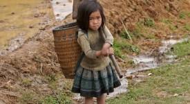 De 5 à 8 millions d'enfants exploités dans le monde