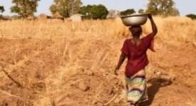 L'aide belge au développement tombe sous la moyenne européenne