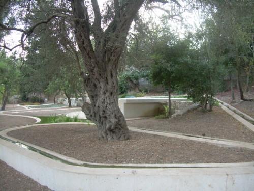 mémorial du cardinal Lustiger à Abu Gosh (c) mcbf