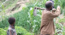 Nos banques financent indirectement l'expropriation de paysans