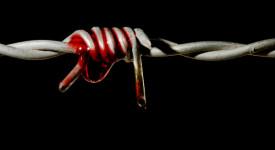 141 pays pratiquent encore la torture !