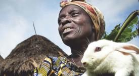 Aide belge au développement : un avenir incertain