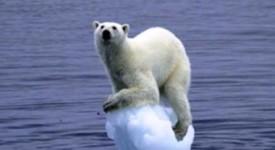 Lutte contre le réchauffement climatique : une urgence !