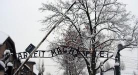 Auschwitz, le procès d'Oskar Gröning s'ouvre aujourd'hui