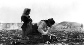 Arménie – Chronique d'un génocide toujours nié