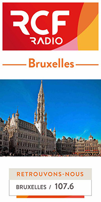 Site-icone-Bruxelles1