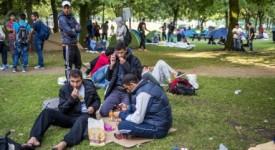 Parcours d'intégration en Wallonie : le futur programme