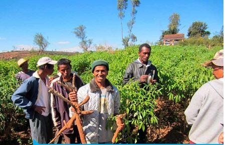 Madagascar-careme-de-partage-2016