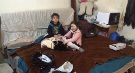 Crise des réfugiés : un rêve d'humanité