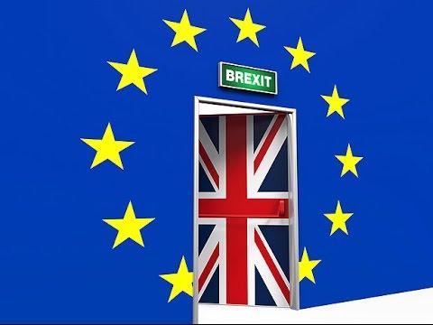"""Brexit : pour le pape François, l'Union Européenne doit trouver """"une autre forme"""""""