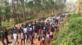 RD Congo : Beni, une population martyrisée