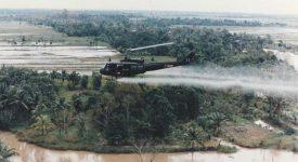 Monsanto, devant la justice planétaire