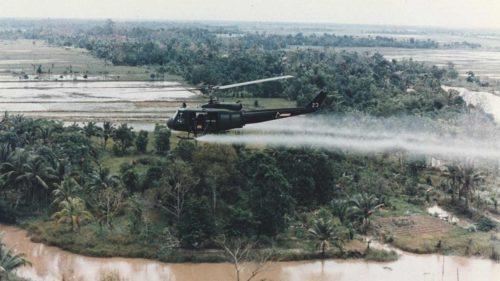 """L'un des chefs d'inculpation contre Monsanto: sa responsabilité dans les malformations congénitales dues à l'utilisation de """"l'agent orange"""" pendant la guerre du Vietnam."""