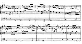 La musique, un langage universel – Le Psaume de la Création