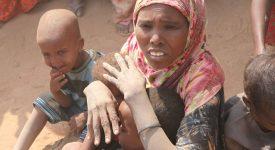 Il était une foi… Lutter contre la famine