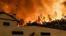 Incendies au Portugal : la Caritas Luxembourg appelle à la solidarité