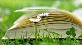 Comblez votre envie de lire cet été !