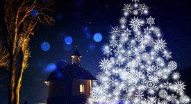 Vivre l'Avent et Noël à la Cathédrale de Tournai