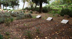 Algérie : vers la béatification de 19 martyrs catholiques