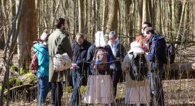 33e JMJ: 150 jeunes dans la forêt de Soignes