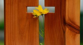 Écho de la formation «Grandir dans la Foi»