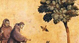 Des saints et des oiseaux: vérités, miracles et symboles
