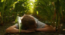 Cinéma – Vent d'air frais sur l'agriculture