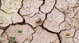 Environnement – La limite est franchie