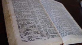 Homélie du 25e dimanche ordinaire : L'audace de l'humilité