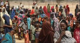 Famine : les belges doivent réagir !