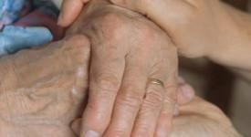 Le diocèse de Tournai prépare la journée des malades