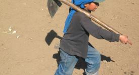 400 millions d'enfants dans le monde vivent en esclavage