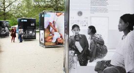 Expo «Welcome to Life
