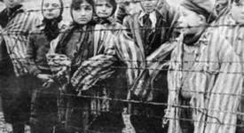 Malines: Le nouveau Musée de l'holocauste et des droits de l'Homme