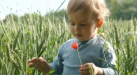 Droits de l'enfant en Belgique : des rapports alternatifs critiques