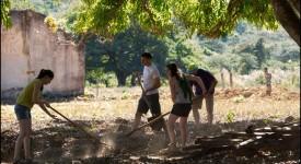 Carnet de route des JMJ au Brésil : le service dans une ferme de réinsertion pour jeunes drogués