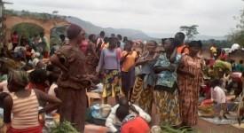 La Centrafrique compte 480.000 déplacés