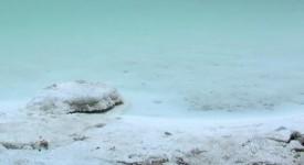 Mer Morte : une fausse bonne nouvelle ?
