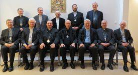 Conférence épiscopale de Belgique : Mgr Jean Kockerols, Mgr Pierre Warin, Mgr Jean-Luc Hudsyn, Mgr Jean-Pierre Delville, Mgr Leo Lemmens, Mgr Johan Bonny, Mgr Patrick Hoogmartens, Mgr Guy Harpigny, Mgr André-Joseph Léonard, Mgr Luc Van Looy, Mgr Rémy Vancottem, Mgr Jozef De Kesel.