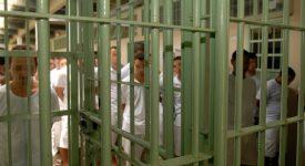 Brésil: «Le système carcéral produit la mort»