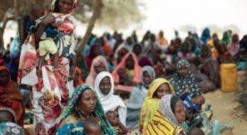 Les organisations catholiques au secours des millions de victimes de Boko Haram