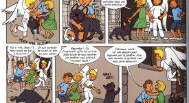 Gaëtan Evrard : L'exactitude dans les moindres dessins