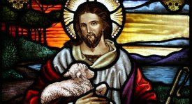 Dimanche du Bon Pasteur et des vocations: le pape ordonne 16 nouveaux prêtres