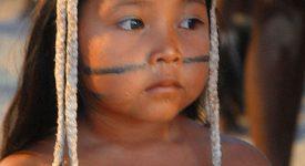 Synode sur l'Amazonie: un document préparatoire entre lucidité et conversion