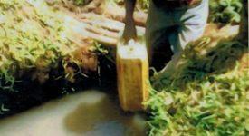 Des forages pour l'or bleu en Ouganda.